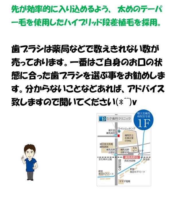 nlh2411_2.jpg